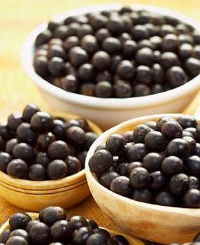 плоды Euterpe oleracea